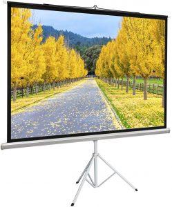 projector screen portable