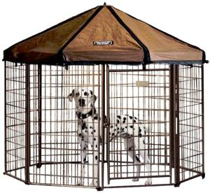 outdoor dog kennel ideas | best outdoor dog kennel
