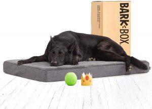 BarkBox Memory Foam Dog Bed Plush sofa orthopedic