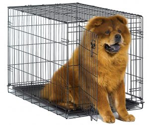 New World Folding Metal Dog Crate | Single Door & Double Door Dog Crates
