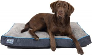 Orthopedic Dog Bed | Pure Premium Shredded Memory Foam Ideal for Aging Dogs