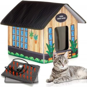 heated outdoor cat house