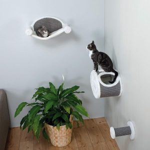 Wall-Mounted Cat Lounging Set for indoor