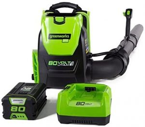 backpack blower for sale