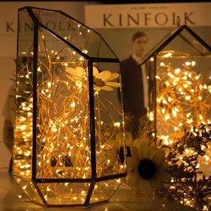 mini christmas tree lights