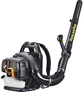 backpack leaf blower review