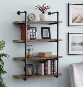 The Bookcase From Homissue