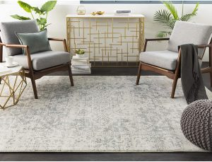 Traditional Area Rug For Your Space